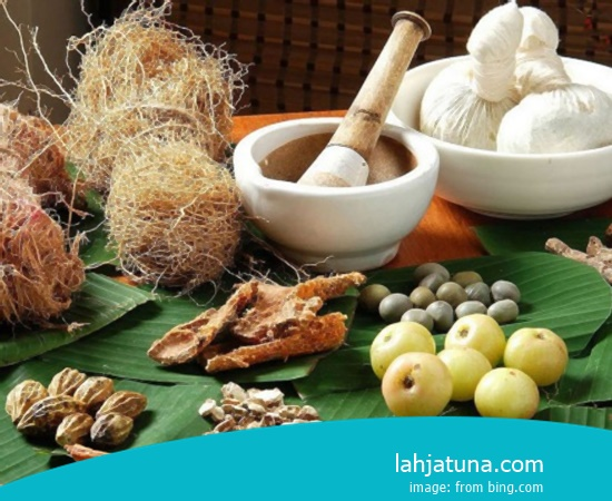 5 Kinds Of Natural Herb Natural And Organic For For Kidney From Plant Natural