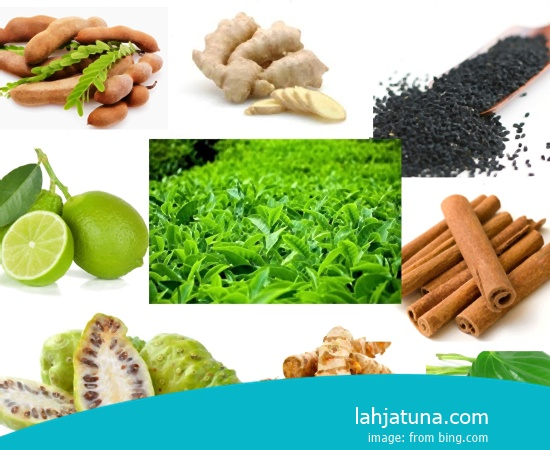6 Kinds Of Drug Traditional For Urinary Tract Infections From Fruits