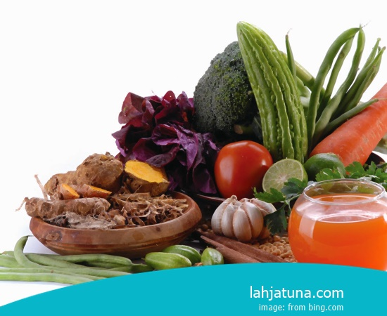 7 Kinds Of Drug Organic For Cholesterol From Plant