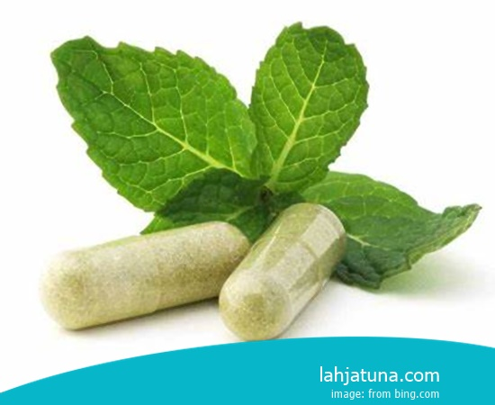 Type Of Medication Herbal For Pain In The Knee